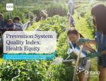 Prevention System Quality Index: Health Equity