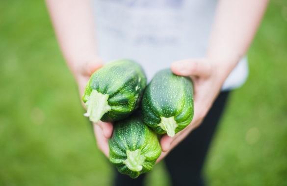 Child holding zucchinis